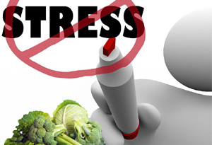 Stress Foods