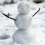 Build Snowman