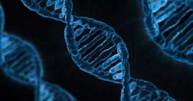 DNA Diet Testing